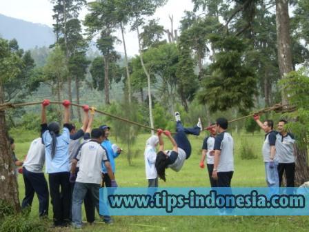 Image Result For Travel Rawamangun