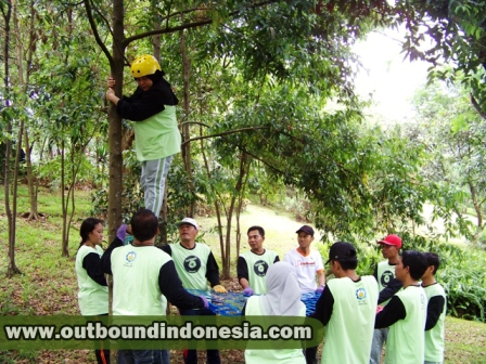 contoh permainan outbound team building,game outbound team building,games outbound untuk team building,harga outbound team building,harga paket outbound team building,jenis permainan outbound team building,materi outbound team building,outbound activities for team building,outbound dan team building,outbound games for team building,outbound learning team building,outbound team building,outbound team building games,outbound team building program,outbound team building training,outbound training team building programs,paket outbound team building,perbedaan outbound dan team building,permainan outbound team building,proposal outbound team building
